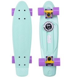 "Fish Skateboards penny board 22.5"" Pastel Mint - Мятный 57 см пенни борд (FP1)"
