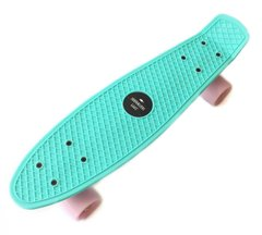 "Zippy Board penny 22"" Mentol - Ментол 54 см пенні борд (Z3)"